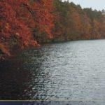 Rezerwat Pełcznica jezioro