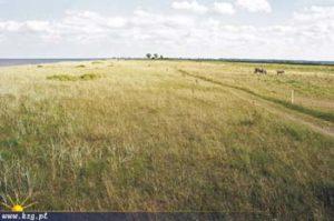 rezerwat beka łąka kzg