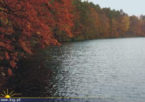trójmiejski park krajobrazowy jezioro
