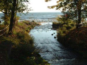 rzeki_potoki_kanaly4 Rzeki, potoki, kanały