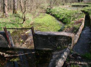 Stary jaz, kanał i pozostałości stawówStary jaz, kanał i pozostałości stawów